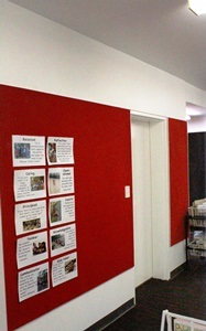 Acoustic Pinboard Walls